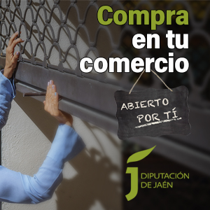CAMPA_Diputac_Comercio Loal_junio21